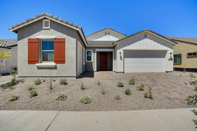 20512 W Rosewood Lane, Buckeye, AZ 85396 (MLS #6041661) :: Nate Martinez Team