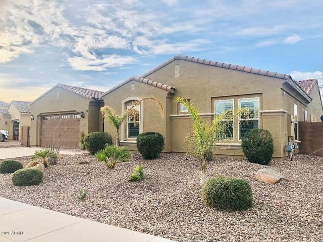 2271 E Saddlebrook Road, Gilbert, AZ 85298 (MLS #6042932) :: Santizo Realty Group