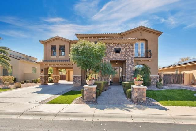 3723 E Nolan Drive, Chandler, AZ 85249 (MLS #6043282) :: Brett Tanner Home Selling Team