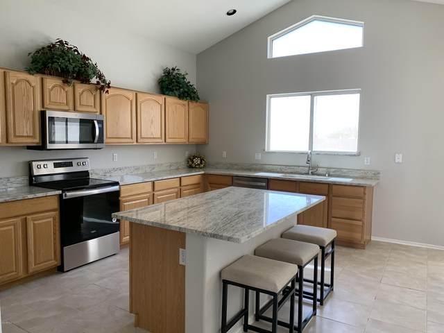 9131 W Albert Lane, Peoria, AZ 85382 (MLS #6046079) :: Howe Realty