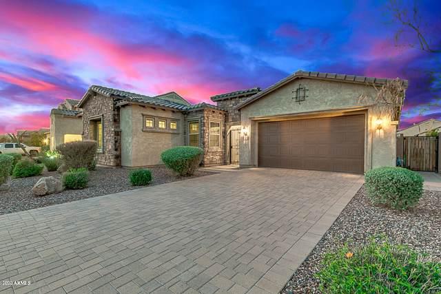 10864 E Thornton Avenue, Mesa, AZ 85212 (MLS #6050513) :: My Home Group