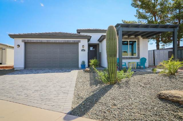 2307 N Shannon Way, Mesa, AZ 85215 (MLS #6051851) :: Conway Real Estate