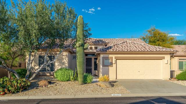 7794 E Wildcat Drive, Gold Canyon, AZ 85118 (MLS #6063910) :: The Helping Hands Team