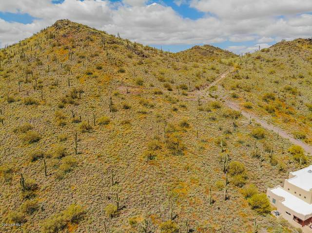 0 W Sentinel Rock Road, Phoenix, AZ 85086 (MLS #6066102) :: Conway Real Estate