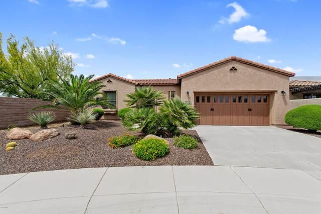 13056 W Lucia Drive, Peoria, AZ 85383 (MLS #6066277) :: The W Group