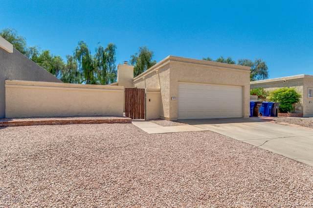 1819 W El Monte Place, Chandler, AZ 85224 (MLS #6068836) :: Lifestyle Partners Team
