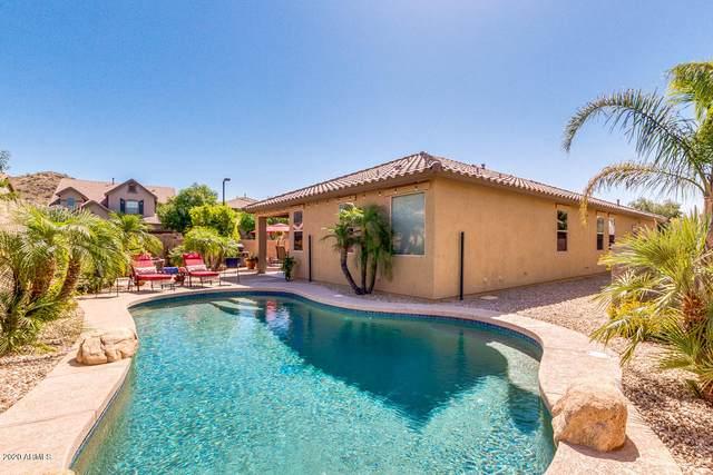 7204 W Andrew Lane, Peoria, AZ 85383 (MLS #6071628) :: Conway Real Estate