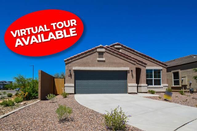 2038 W Yellowbird Lane, Phoenix, AZ 85085 (MLS #6073258) :: Lux Home Group at  Keller Williams Realty Phoenix