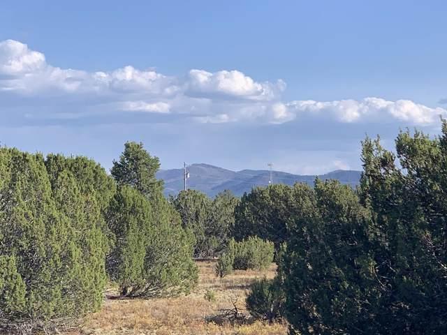 154 County Road 3187, Vernon, AZ 85940 (MLS #6073521) :: Balboa Realty
