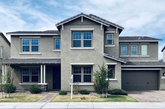 908 W Yosemite Drive, Chandler, AZ 85248 (MLS #6075119) :: Klaus Team Real Estate Solutions