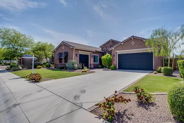 5449 E Barwick Drive, Cave Creek, AZ 85331 (MLS #6076876) :: The Daniel Montez Real Estate Group