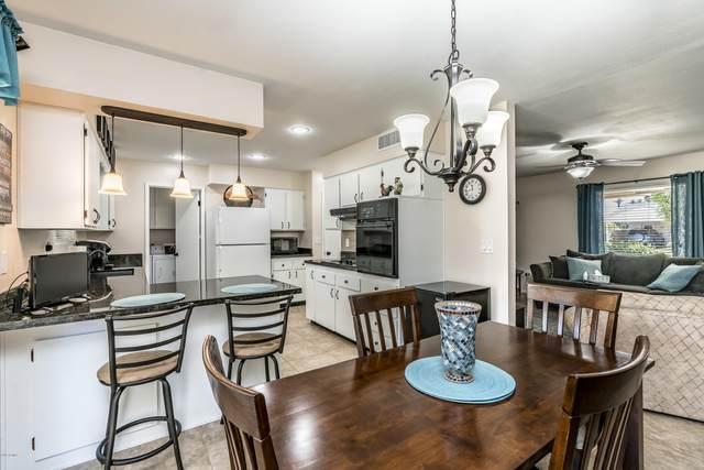 10531 W Tropicana Circle, Sun City, AZ 85351 (MLS #6078537) :: Power Realty Group Model Home Center