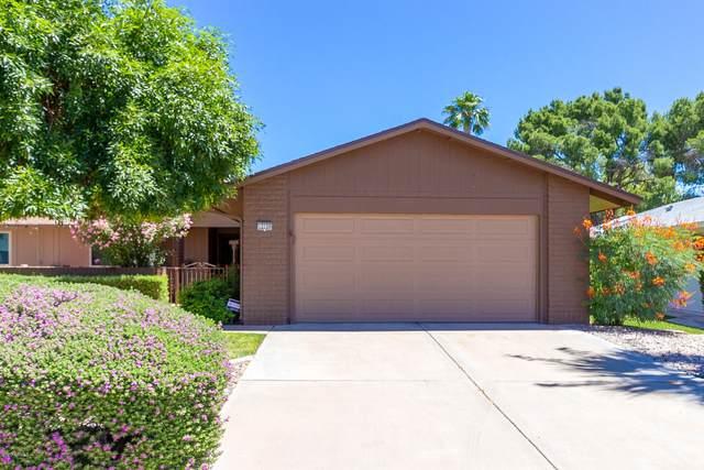 12726 W Maplewood Drive, Sun City West, AZ 85375 (MLS #6081678) :: The Daniel Montez Real Estate Group
