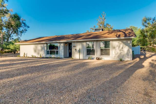 1016 E Village Circle Drive S, Phoenix, AZ 85022 (MLS #6084578) :: Revelation Real Estate