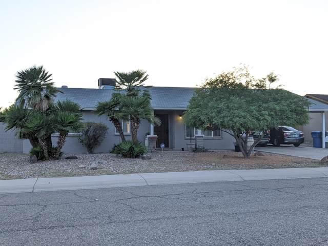 18640 N 12TH Avenue, Phoenix, AZ 85027 (MLS #6086379) :: REMAX Professionals