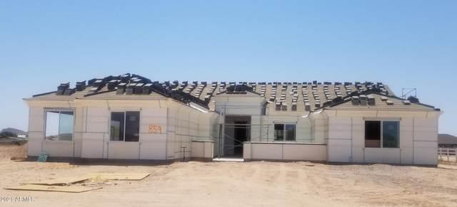 859 W Rhonda View, San Tan Valley, AZ 85143 (MLS #6087402) :: Yost Realty Group at RE/MAX Casa Grande