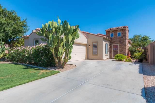 14821 W Charter Oak Road, Surprise, AZ 85379 (MLS #6090805) :: Klaus Team Real Estate Solutions