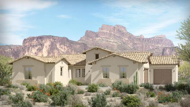 535 N Moon Road, Apache Junction, AZ 85119 (MLS #6094462) :: Yost Realty Group at RE/MAX Casa Grande