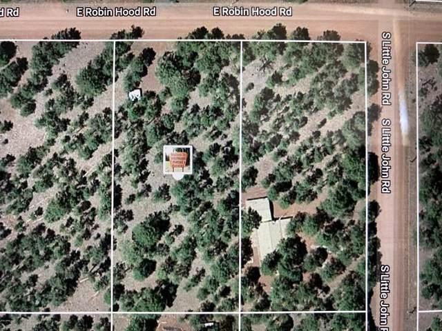 7454 E Robin Hood Road, Williams, AZ 86046 (MLS #6094751) :: Homehelper Consultants