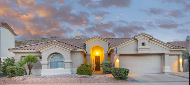 1343 E Desert Broom Way, Phoenix, AZ 85048 (MLS #6097182) :: Dave Fernandez Team | HomeSmart