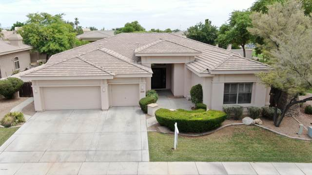 1629 W Glacier Way, Chandler, AZ 85248 (MLS #6102279) :: The Property Partners at eXp Realty