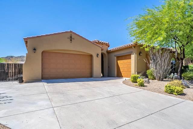 8661 W Rowel Road, Peoria, AZ 85383 (MLS #6106375) :: Maison DeBlanc Real Estate