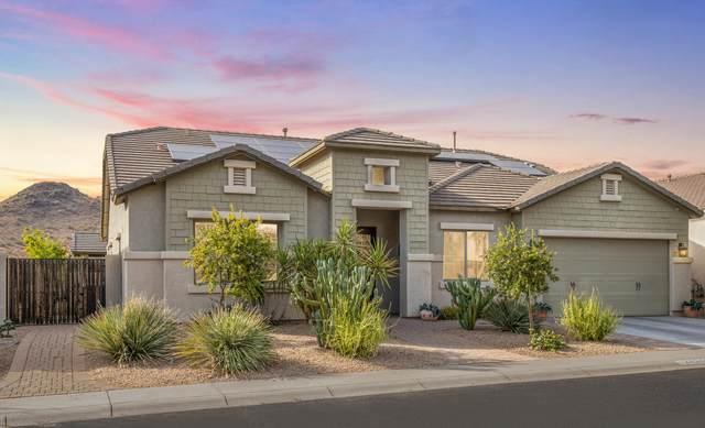 24340 N 24TH Way, Phoenix, AZ 85024 (MLS #6107655) :: Klaus Team Real Estate Solutions