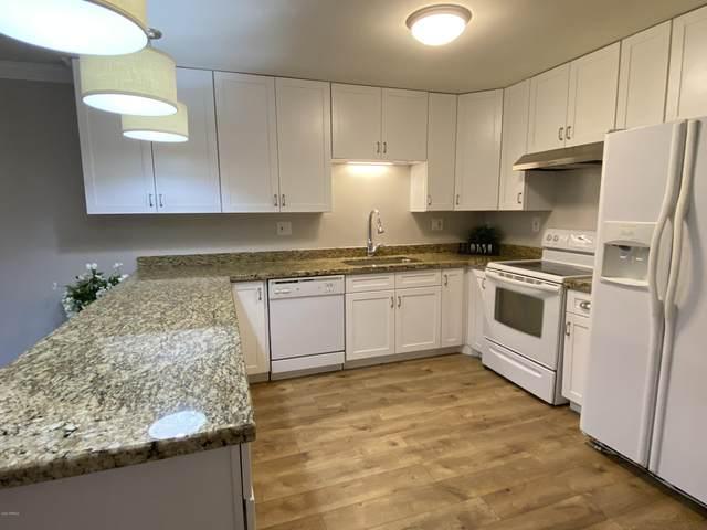 141 N Date #57, Mesa, AZ 85201 (MLS #6108229) :: Klaus Team Real Estate Solutions