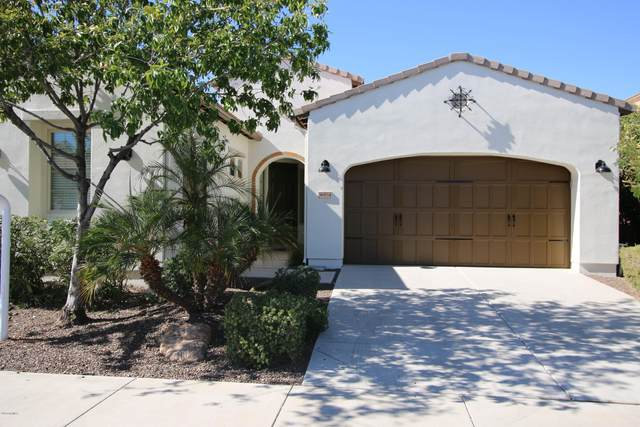 36834 N Crucillo Drive, San Tan Valley, AZ 85140 (MLS #6121597) :: My Home Group