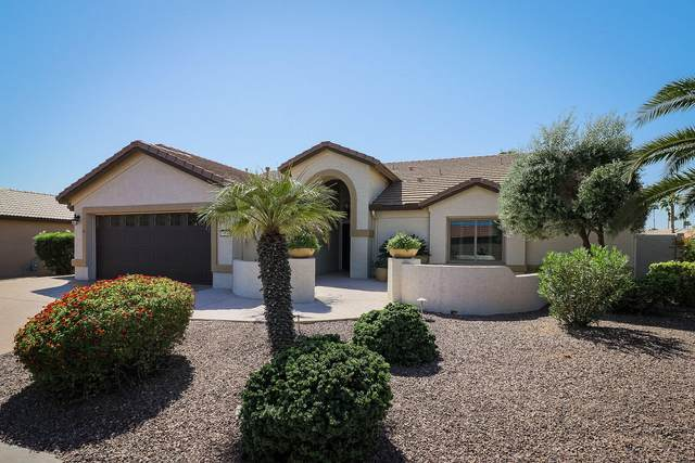 15993 W Catalina Drive, Goodyear, AZ 85395 (MLS #6123298) :: Homehelper Consultants