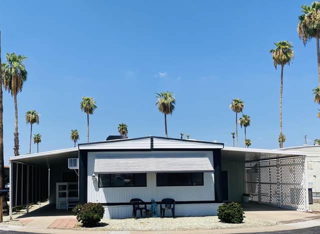 4065 E University Drive #136, Mesa, AZ 85205 (MLS #6126818) :: Conway Real Estate