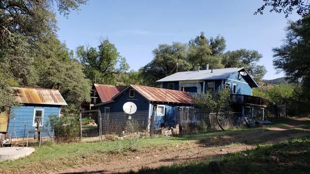 3995 W Fsr 249, Young, AZ 85554 (MLS #6127067) :: Yost Realty Group at RE/MAX Casa Grande