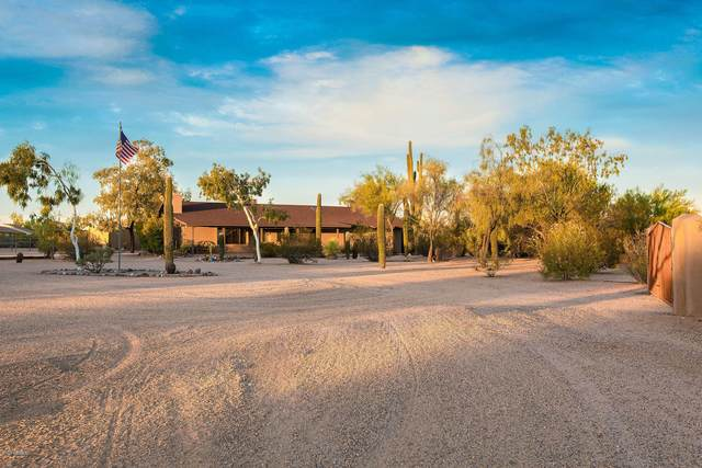 4224 E Pinnacle Vista Drive, Cave Creek, AZ 85331 (MLS #6128557) :: Devor Real Estate Associates