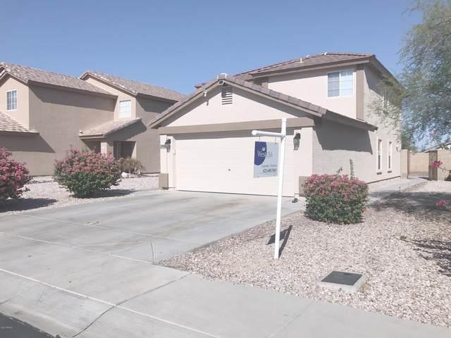 567 S 223rd Drive, Buckeye, AZ 85326 (#6128663) :: The Josh Berkley Team