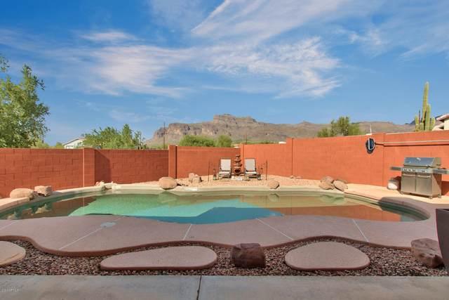5939 E 16TH Avenue, Apache Junction, AZ 85119 (MLS #6129722) :: REMAX Professionals