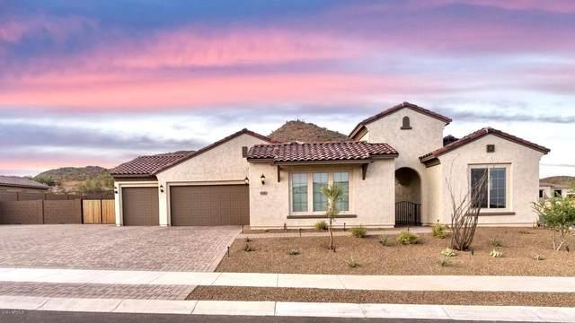 8542 W Artemisa Avenue, Peoria, AZ 85383 (MLS #6130988) :: Conway Real Estate
