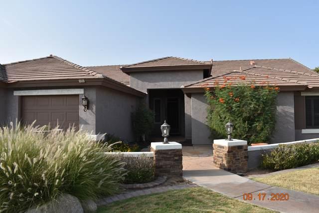 4456 E Downing Circle, Mesa, AZ 85205 (MLS #6134579) :: The Laughton Team