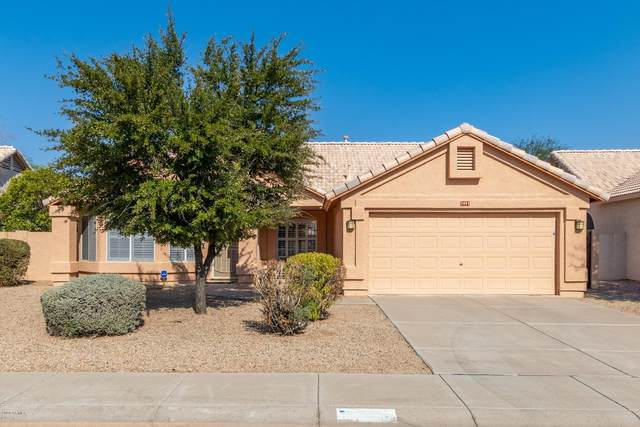 2481 N 132ND Avenue, Goodyear, AZ 85395 (MLS #6135407) :: Klaus Team Real Estate Solutions