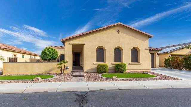 16164 W Holly Street, Goodyear, AZ 85395 (MLS #6135828) :: Arizona Home Group