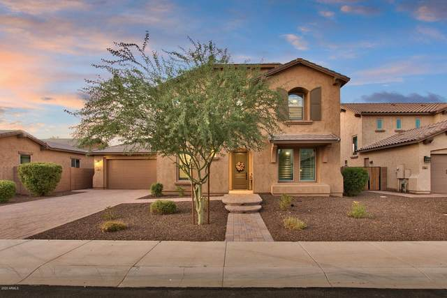 904 E Hampton Lane, Gilbert, AZ 85295 (MLS #6136664) :: My Home Group