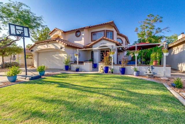 1658 W Gunstock Loop, Chandler, AZ 85286 (MLS #6137137) :: My Home Group