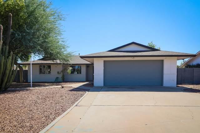 3327 W Acoma Drive, Phoenix, AZ 85053 (MLS #6141923) :: D & R Realty LLC