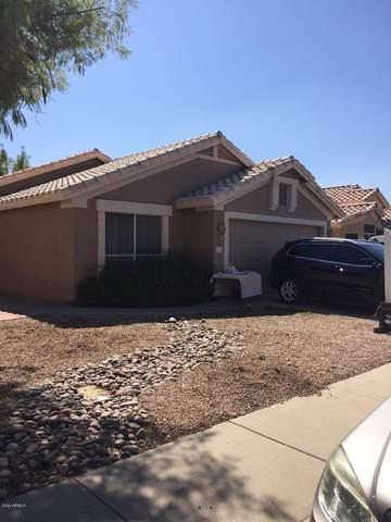 713 E Gail Drive, Chandler, AZ 85225 (MLS #6142745) :: Devor Real Estate Associates