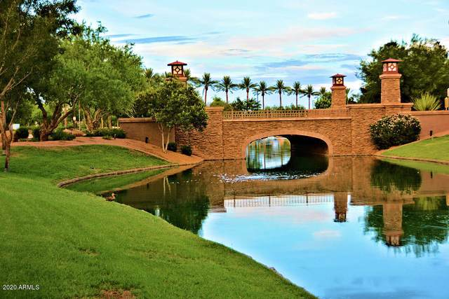 521 W Powell Way, Chandler, AZ 85248 (MLS #6144693) :: Dave Fernandez Team | HomeSmart