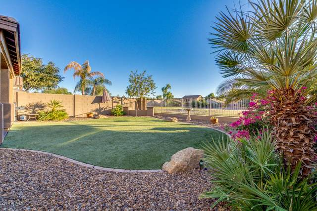 22237 E Via Del Palo, Queen Creek, AZ 85142 (MLS #6146980) :: D & R Realty LLC