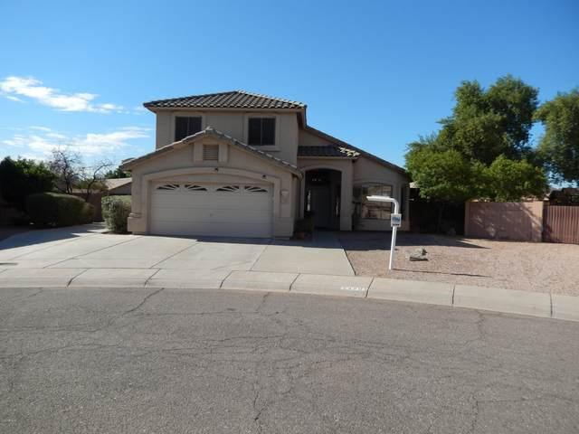 4701 E Ashurst Drive, Phoenix, AZ 85048 (MLS #6154519) :: The Riddle Group