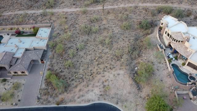 14352 E Coyote Road, Scottsdale, AZ 85259 (MLS #6156638) :: Brett Tanner Home Selling Team