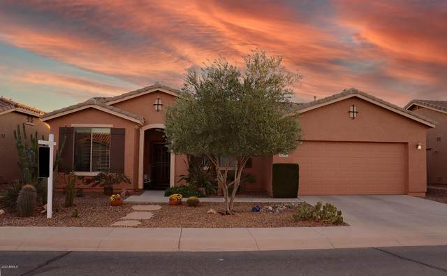 42607 W Constellation Drive, Maricopa, AZ 85138 (MLS #6158772) :: Arizona Home Group