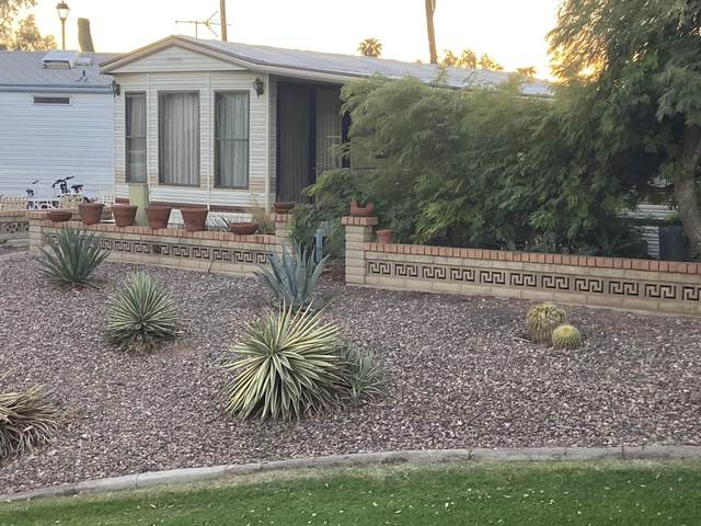 2171 S Cherokee Avenue, Apache Junction, AZ 85119 (MLS #6159364) :: Walters Realty Group