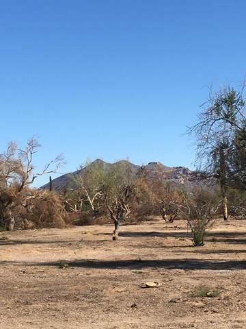 5016 E Lone Mountain Road E, Phoenix, AZ 85031 (MLS #6171364) :: Klaus Team Real Estate Solutions